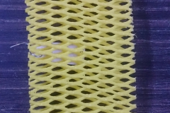 yellow-scaled